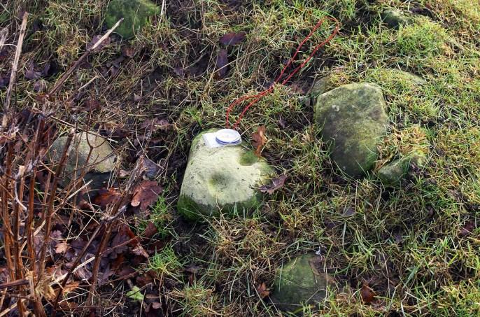 betty-watsons-cup marked stone