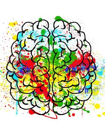 Miten tee vaikuttaa aivoissa?