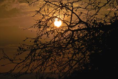 Herbstabend im Myoshinan