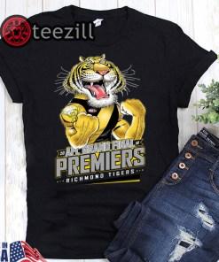 20 AFL grand final premiers richmond tigers t-shirts