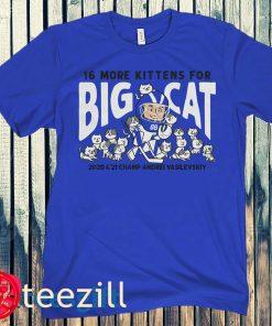 16 More Kittens for Big Cat Hoodie Shirt