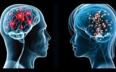 Lesson plan: Men's brains vs. women's brains.