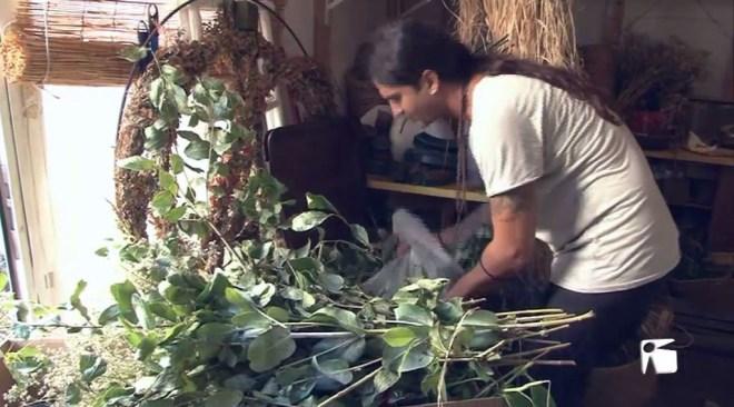 14/09 Formentera estalvia una tona diària en residus orgànics