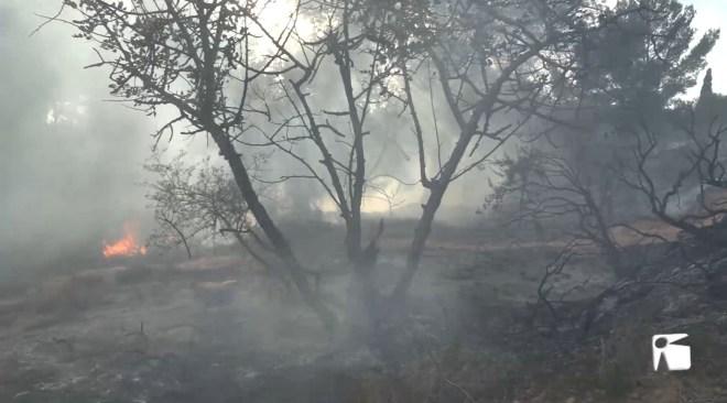23/10/2020 Incendi a Puig d'en Valls