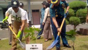 Inspiratif, Anggota TNI AL Asal Jepara Ini Kembangkan Buah Tin