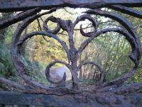 Iron railings 1