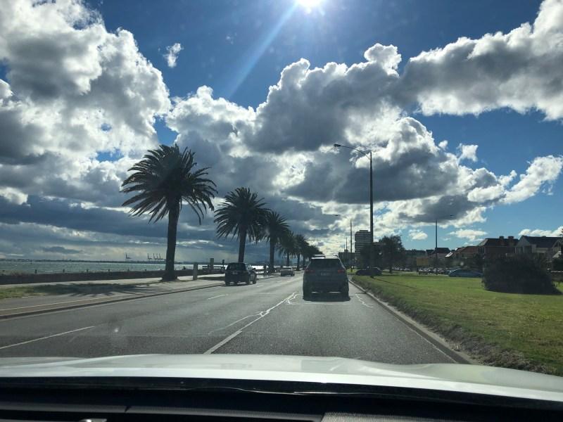 Driving near palm trees