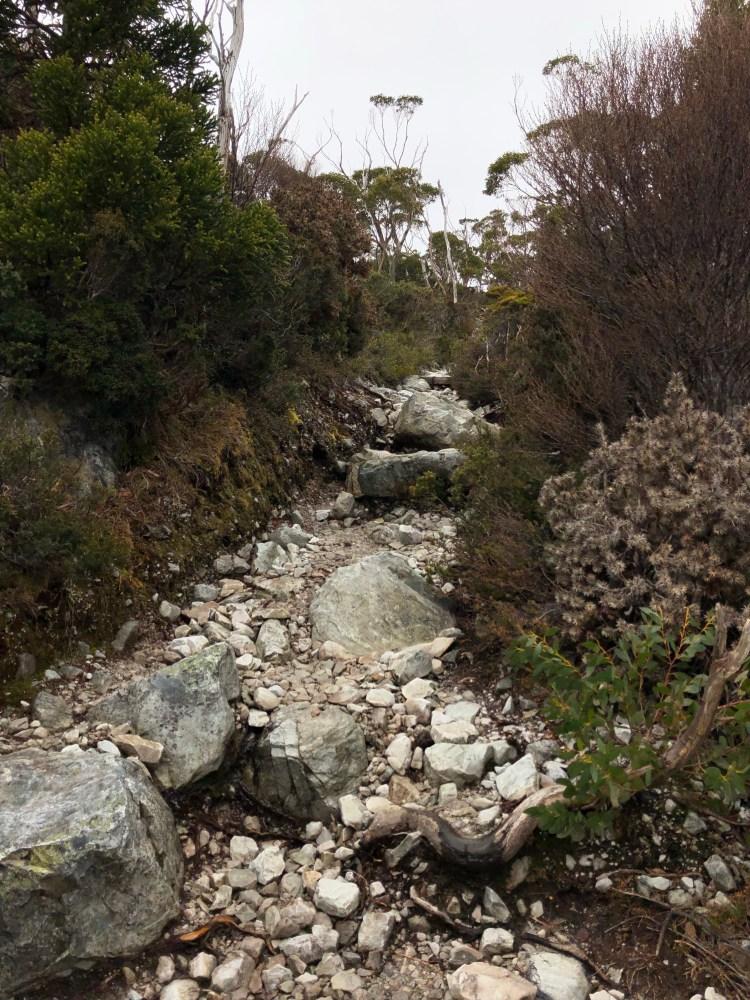 steep rocky trail