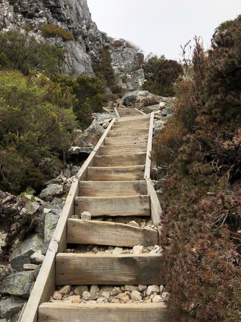 wooden and rock steps up mountain
