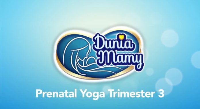 website duniamamy