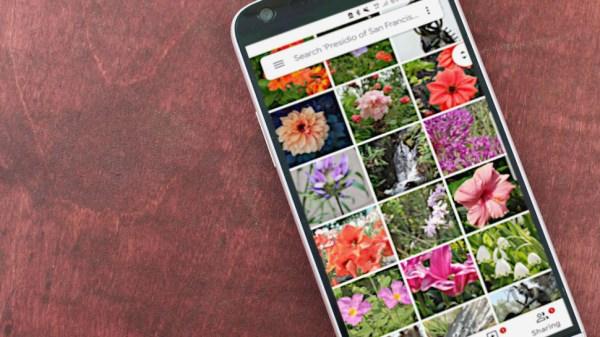 Google Фото теперь позволяет искать текст в ваших фото »