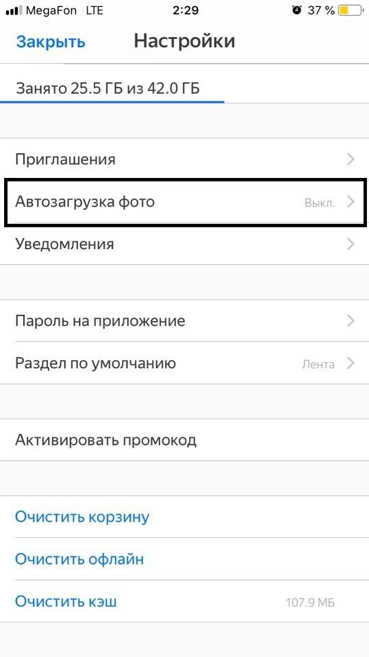 Startup na larawan mula sa Yandex disc.