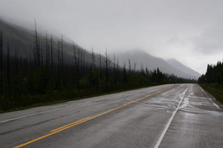 Waldbrand Kootenay Pass