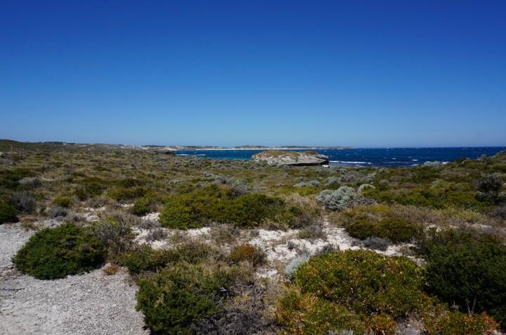 Westküste Rottnest Island