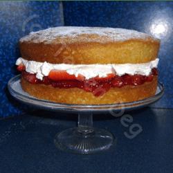 home made sponge cake