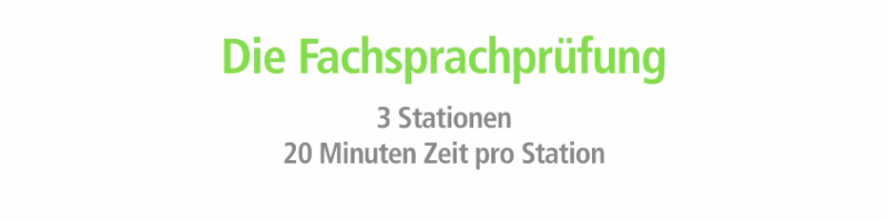 What is Fachsprachenprüfung?