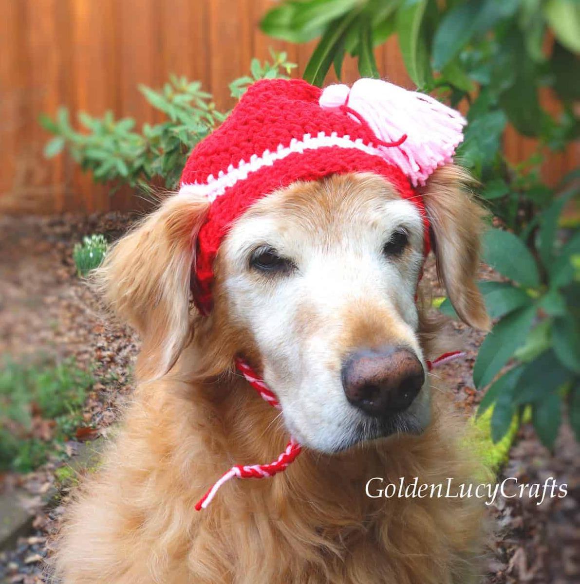gorro a crochet tejidos crochet