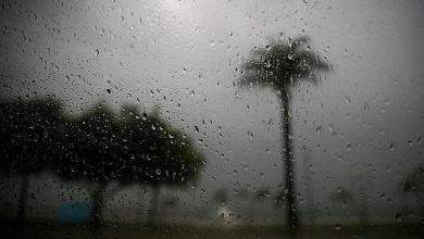 Photo of آخر أخبار الطقس في سلطنة عمان مع إستمرارية أخدود الركام