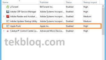 Adobe Updater Startup Utility