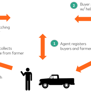 Farmers digital marketplace 2KUZE launches in East Africa to connect farmers, agents and buyers