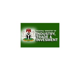 The Buhari Plan of 3 million jobs is the Smart Nigeria Digital Economy Project