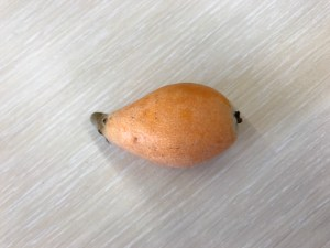 What is this fruit?