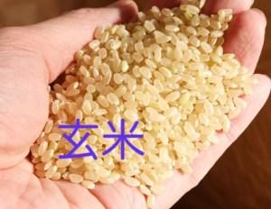 玄米精米する前のお米