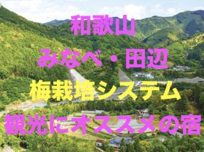 ジアス和歌山梅栽培の宿