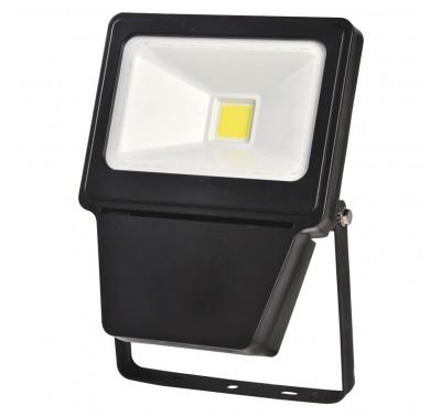 LED COB 30W BL 6000K