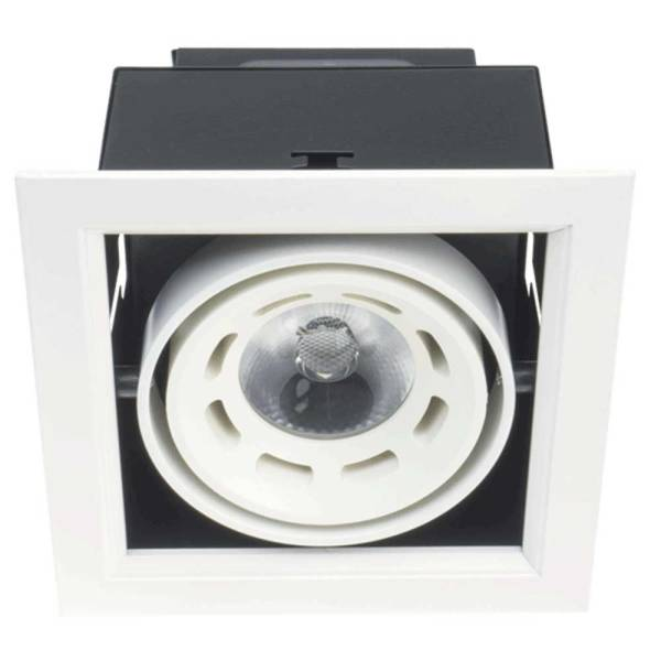 Led Directional Recessed Downlight 10W 3000K