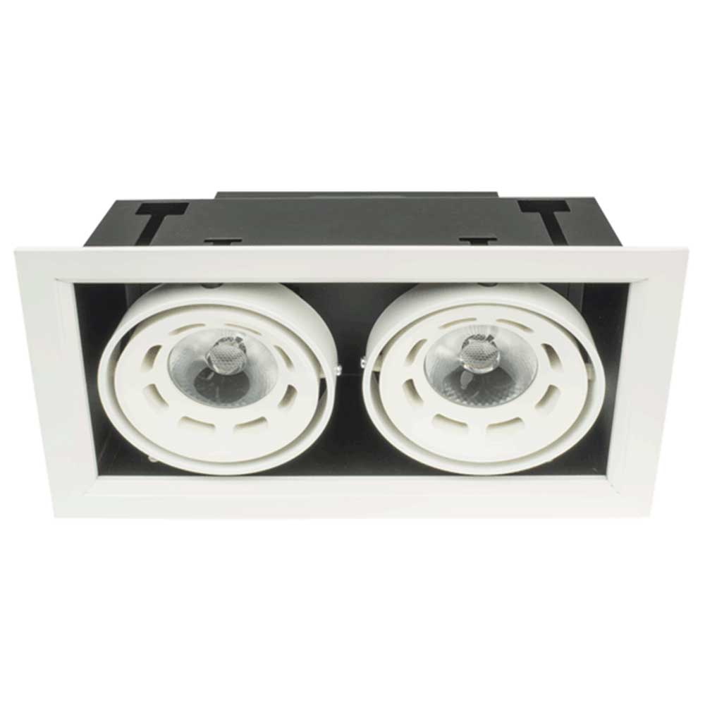 Recessed Directional Downlight 2x10W