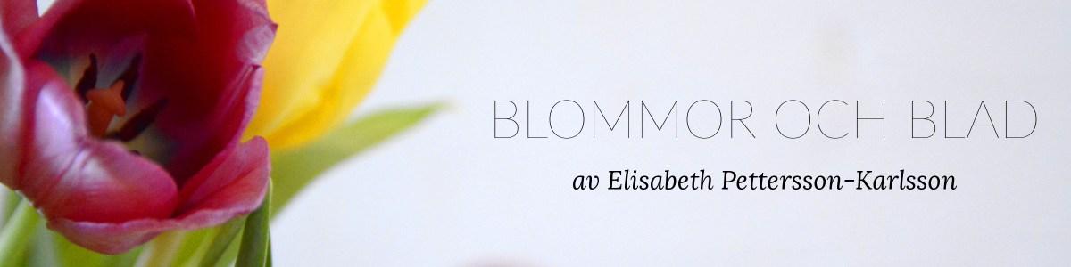 bloggheader exempel teknifik tutorial