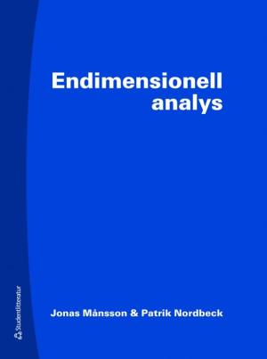 Endimensinell analys