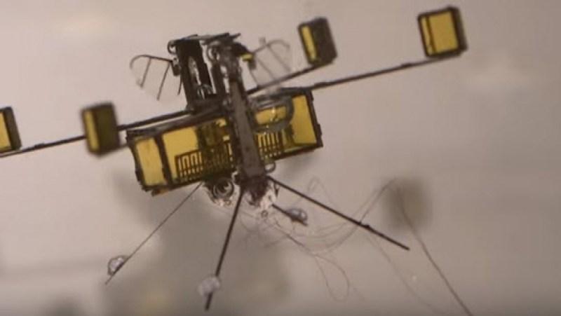 Robot At Sineği