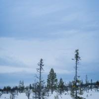 Varför du ska åka till Lofsdalen! #massoravbilder