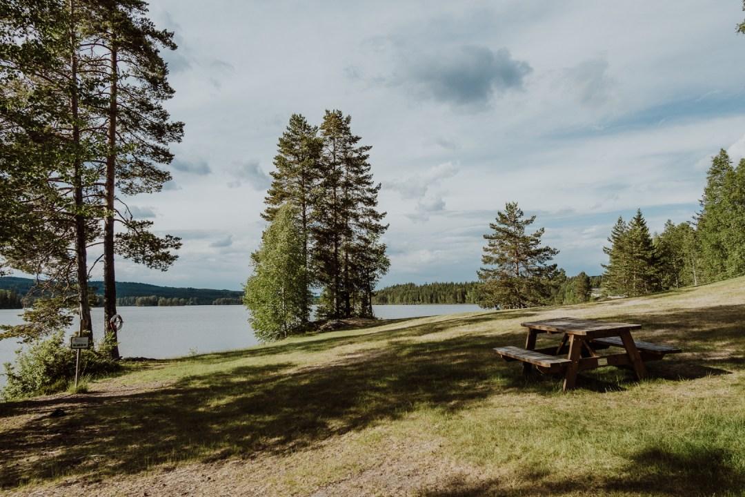 Upplev Säfsen med att paddla kanot, fiska, äta god mat eller köra MTB