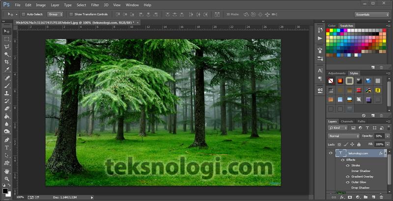 teksnologi-photoshop1