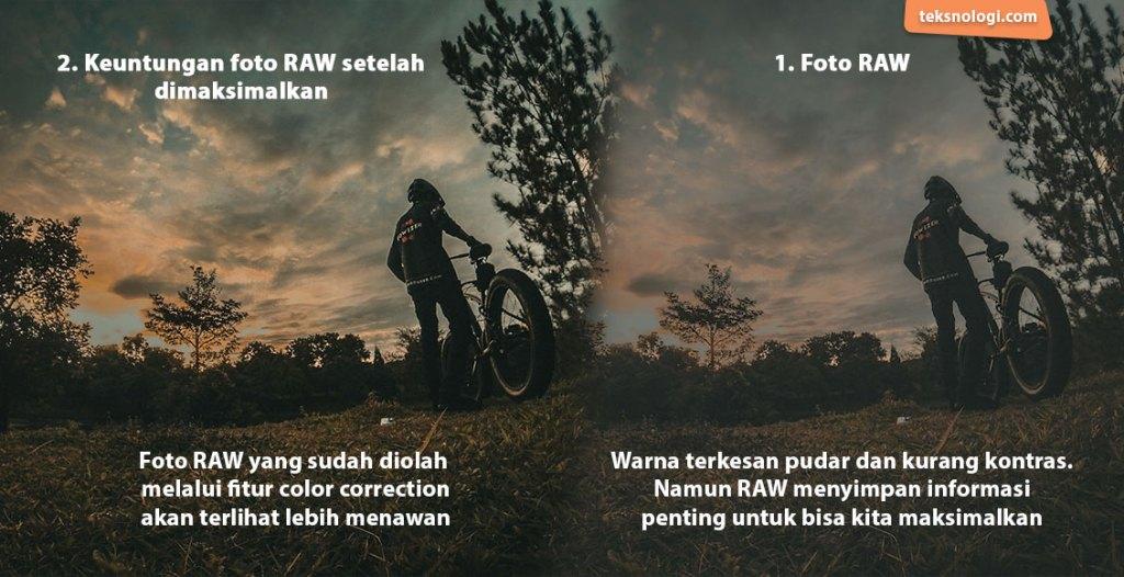 apa itu raw contoh foto raw