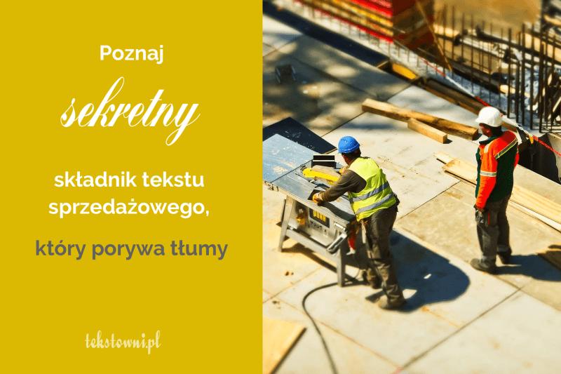 oferta jak napisać, Poznaj sekretny składnik tekstu sprzedażowego, któryporywa tłumy, Tekstowni.pl