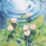 水音 (ミズオオバコ) 382x297