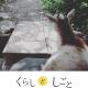 かきくけコラム :「くらしとしごと」vol.9