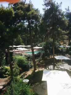 sap resort in the galil israel