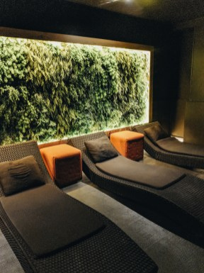 The spa at grau roig