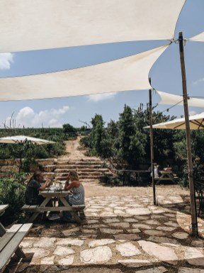 organic farm in israel
