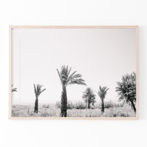 palm trees black white wall print