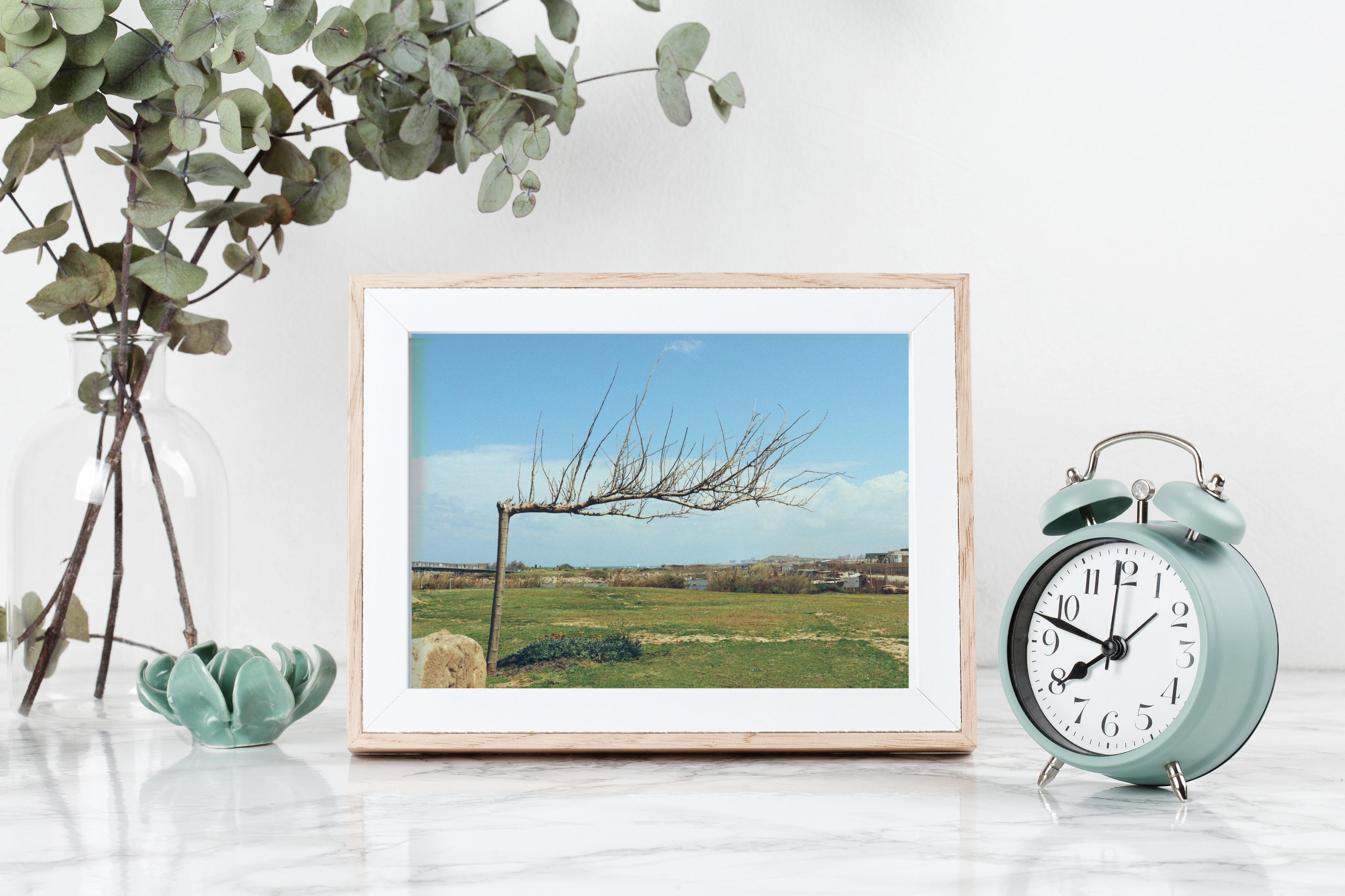 tel aviv horizontal tree print