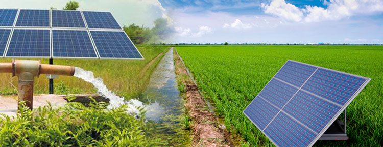 solar power irrigation