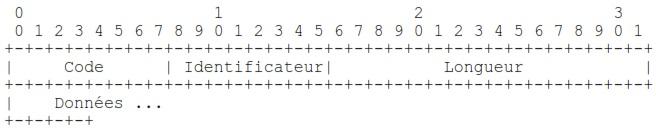 Formats de paquets LCP
