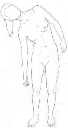 Inclinaison latéral