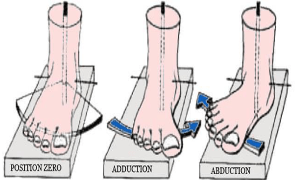 Les mouvements de torsion du pied